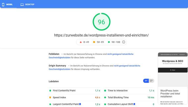 google Pagespeed test